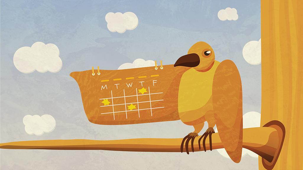 BIRD is the word@0,25x